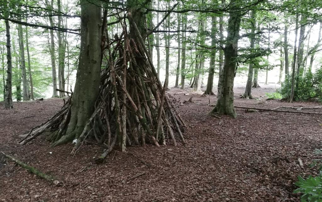 Den between trees