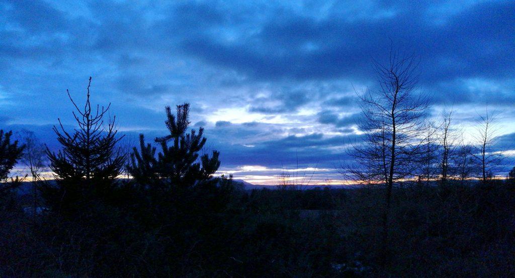 deep blue sky with trees