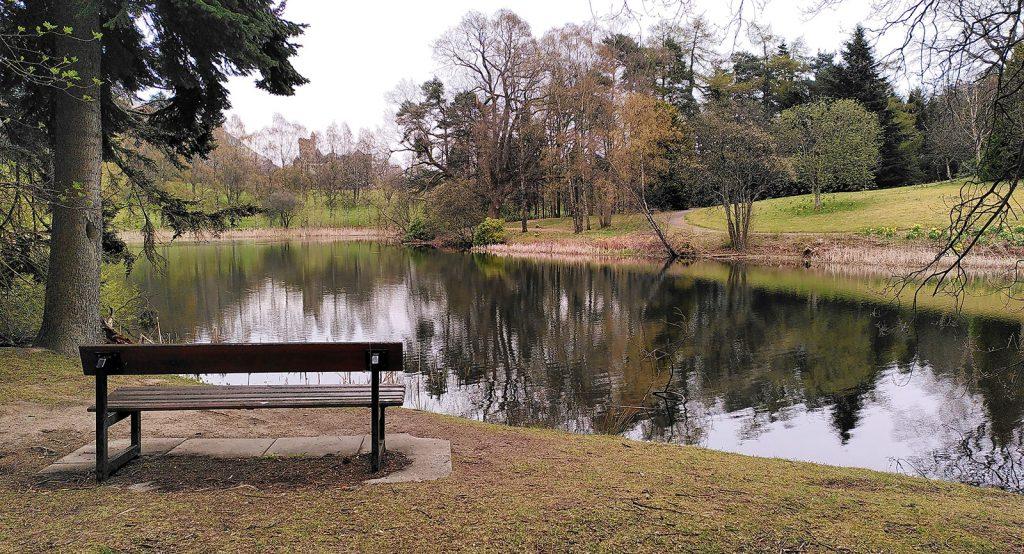 bench beside still waters